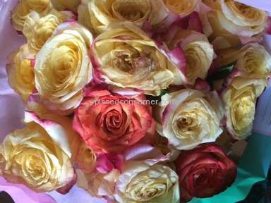 Avasflowers Flowers review 61503