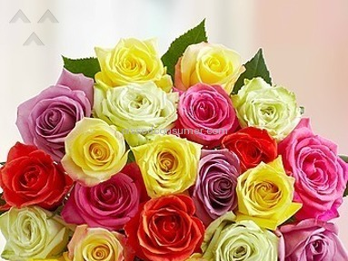 1800Flowers Bouquet review 24781