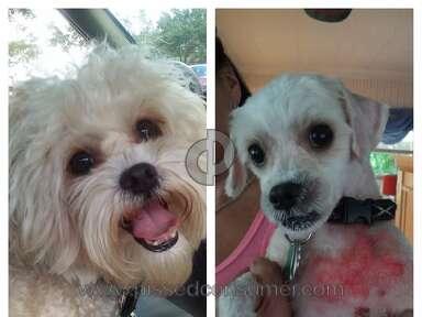 Petsmart - Grooming