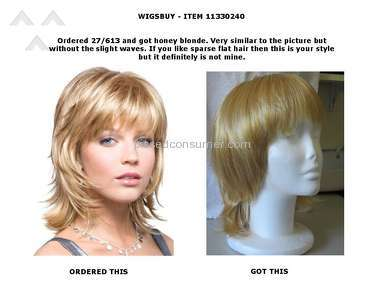 Wigsbuy Human Hair Wig review 139859