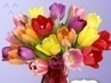 ProFlowers Flowers review 11023