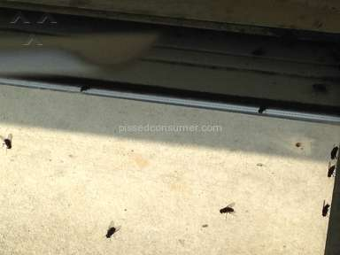 Intown Suites Sanitary Conditions review 228114