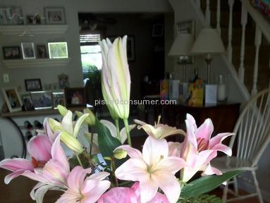 ProFlowers Bouquet review 7095