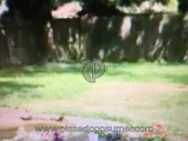 Trugreen Lawn Fertilization Service review 152128