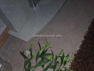 Prestige Flowers - Disgraceful quality and disgusting customer service