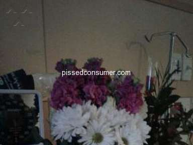 Bloomex Australia - *** Company Disgrace ..No roses..My nan Dying..