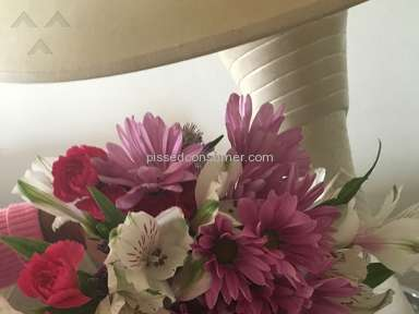 Proflowers Shower Of Flowers Arrangement Review from Brooklyn, New York