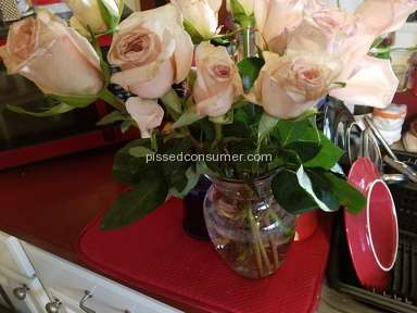 Wesley Berry Flowers Roses Flowers review 132013