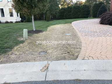 Trugreen Lawn Aeration Service review 341032