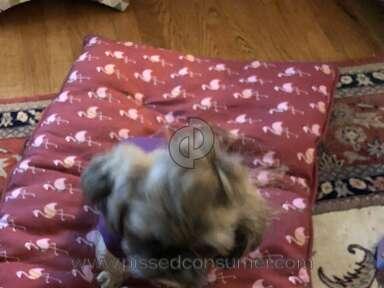 Petco Pet Stores review 294360
