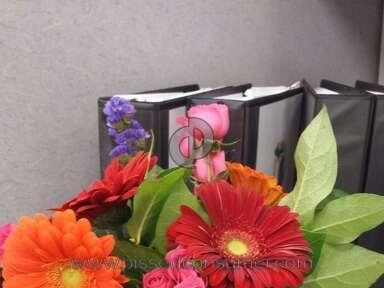 Avasflowers Floral Vibrance Bouquet review 100973