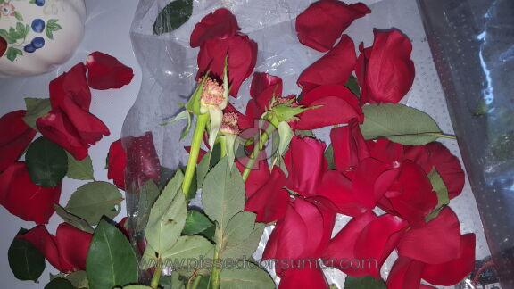 Wesley Berry Flowers Roses Flowers