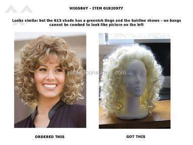 Wigsbuy Human Hair Wig review 139845