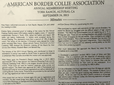 American Border Collie Association Animal Services review 153248