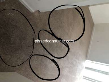 All Green Carpet Cleaning - They don't clean even water removable stains from shoes