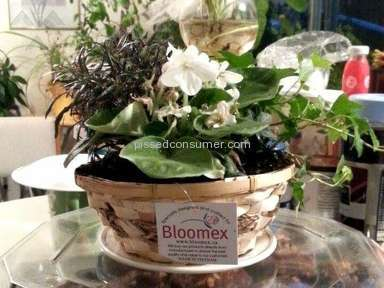 Bloomex Flowers - Poor Service and misleading information on website