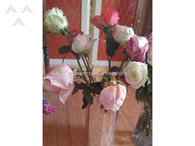 Avasflowers Flowers review 192986