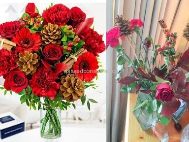 Prestige Flowers Festivity Bouquet review 183252