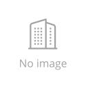 Everflora Ru Bonsai Plant