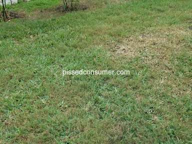 TruGreen Landscaping and Gardening review 877126