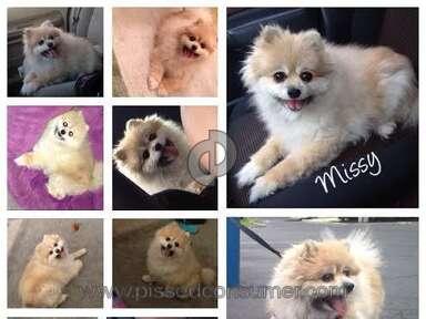 Banfield Pet Hospital Pet Medicine and Veterinary Clinics review 53717