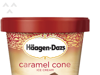 Haagen Dazs Food Manufacturers review 11049