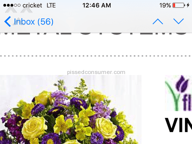 1800flowers Vintage Charm Bouquet review 131503