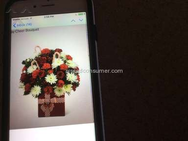 Wesley Berry Flowers Bouquet review 101661