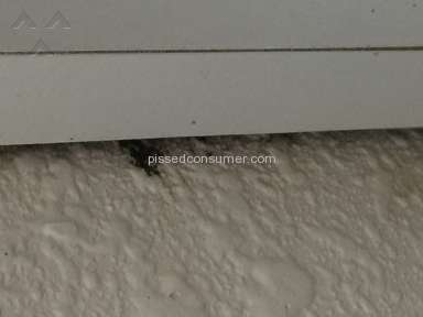 Motel 6 Sanitary Conditions review 128643