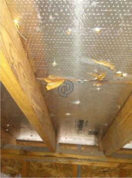 Leak Tech Specialist Roof Repair