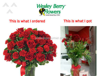 Wesley Berry Flowers Flowers review 114837