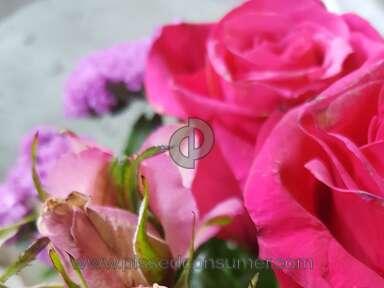 Justflowers Flowers / Florist review 342438
