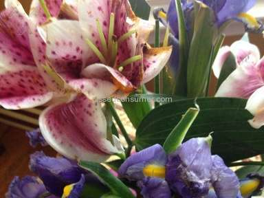 Proflowers Flowers review 71031
