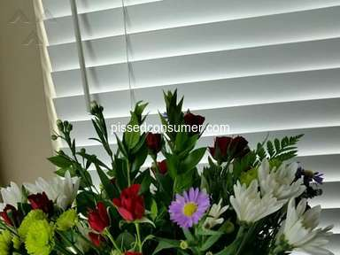 Avasflowers Flowers review 389642