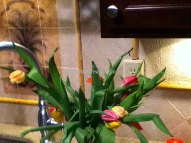 ProFlowers Flowers review 11025