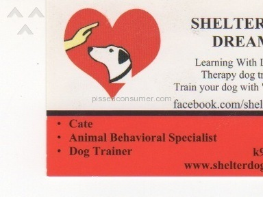 Shelter Dogs To Dream Dogs Dog Training review 127319