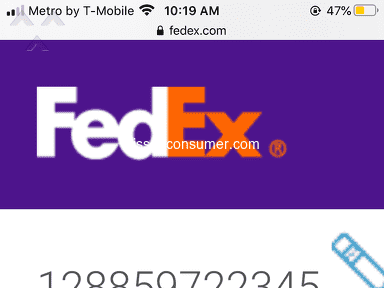 FedEx Next Day Delivery Service review 719959