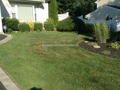 Trugreen Lawn Service review 225124
