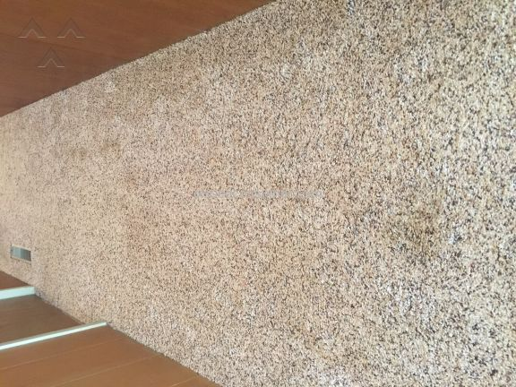 Chemdry Carpet Cleaning Service