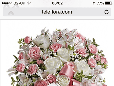 Teleflora Sweet Little Lamb Baby Pink Bouquet Review from London, London