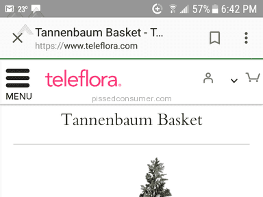 Teleflora Tannenbaum Basket Flower Basket review 252612