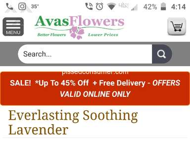 Avasflowers Flowers review 371964