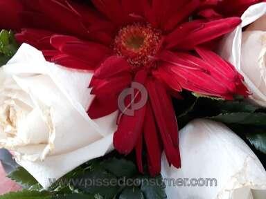 Bloomex Flowers Sparkle Of Christmas Centrepiece Arrangement review 185268