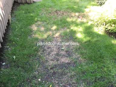 TruGreen Lawn Service review 306004