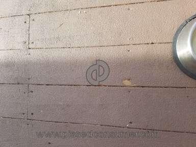 Behr Deckover Deck Paint review 287608
