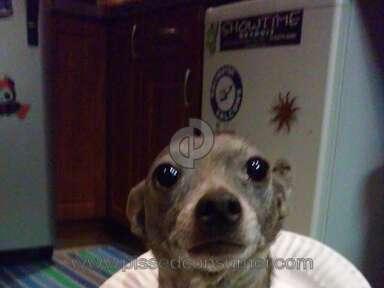 Petsmart Purina One Dog Food review 387684
