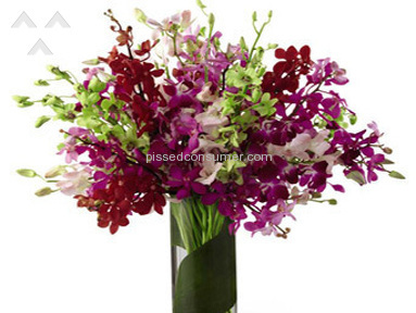 Wesley Berry Flowers Arrangement review 64071