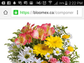 Bloomex Flowers - Bouquet Review from Calgary, Alberta