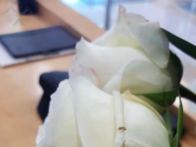 Avasflowers - DO NOT ORDER FROM THERE!! MY FLOWERS CAME OUT DISGUSTING!