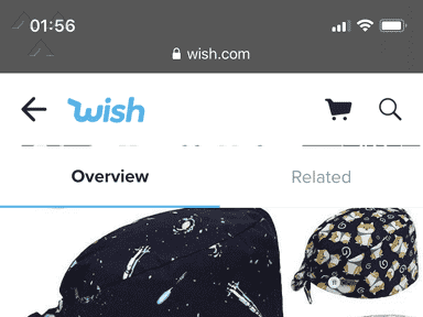 Wish Shipping Service review 692019